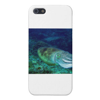 cuttlefish case for iPhone SE/5/5s