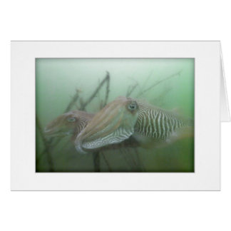 Cuttlefish Couple Greeting Card
