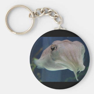 cuttlefish basic round button keychain