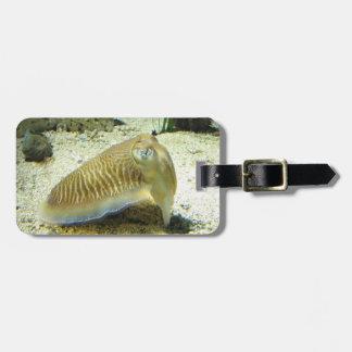 Cuttlefish Luggage Tag