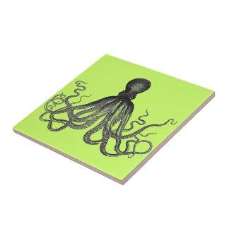 Cuttlefish tiles