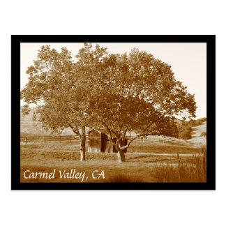 CV summer shed Postcard