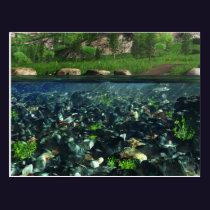 Cwm River Postcard