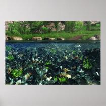 Cwm River Print