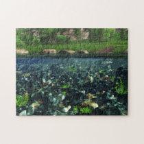 Cwm River Puzzle