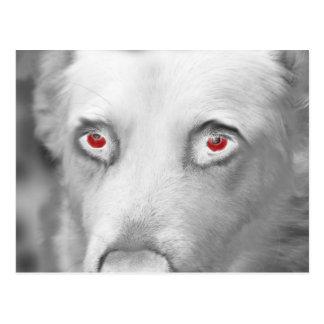 Cwn Annwn - perros del otro mundo Galés de la Tarjetas Postales