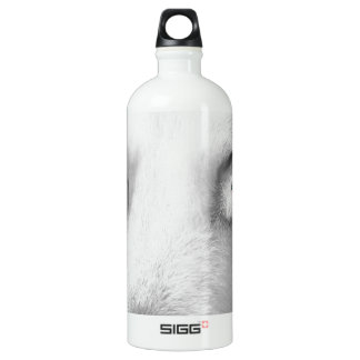 Cwn Annwn - Welsh Otherworldly Dogs of Death Aluminum Water Bottle