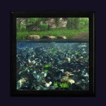 Cwn River Jewelry Box