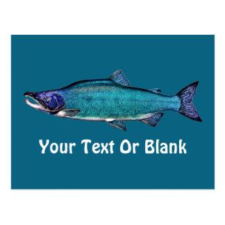 Cyanotic Salmon Post Cards