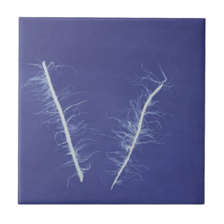 cyanotype of lines in blue and white #3 tile