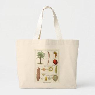 Cycad Canvas Bag