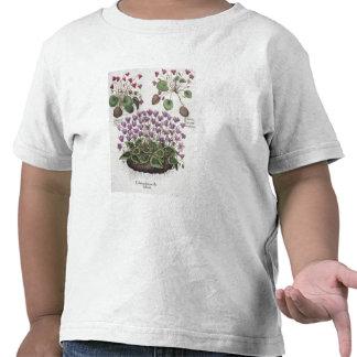 Cyclamen: 1.Cyclamen serotinum foliis hederaceis; T-shirt