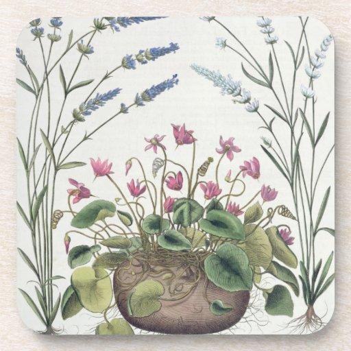 Cyclamen and Lavender: 1.Cyclamen Romanum; 2.Spica Beverage Coaster