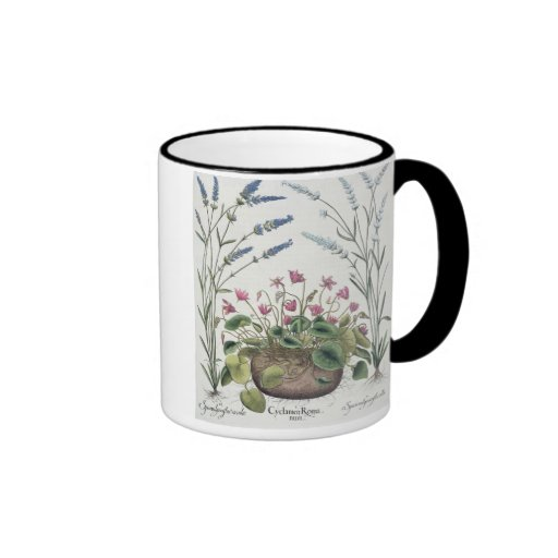 Cyclamen and Lavender: 1.Cyclamen Romanum; 2.Spica Coffee Mug