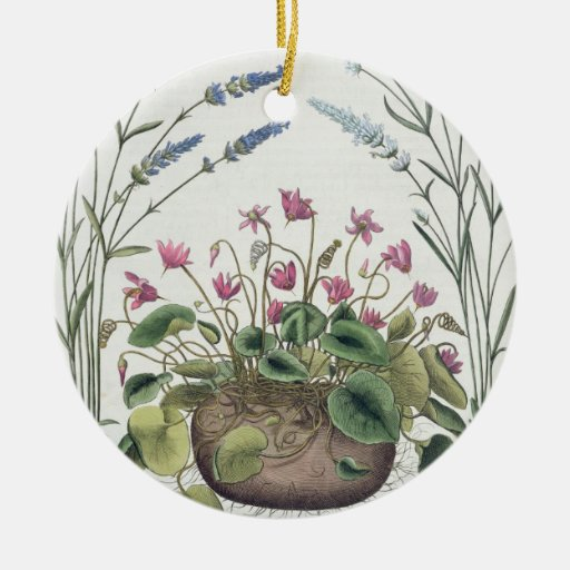 Cyclamen and Lavender: 1.Cyclamen Romanum; 2.Spica Christmas Tree Ornament