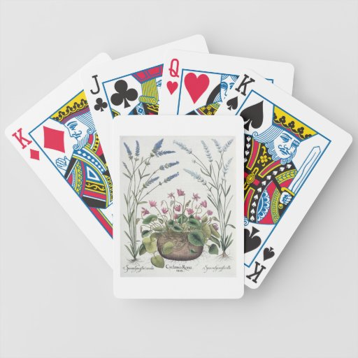 Cyclamen and Lavender: 1.Cyclamen Romanum; 2.Spica Poker Cards