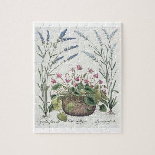 Cyclamen and Lavender: 1.Cyclamen Romanum; 2.Spica Jigsaw Puzzles