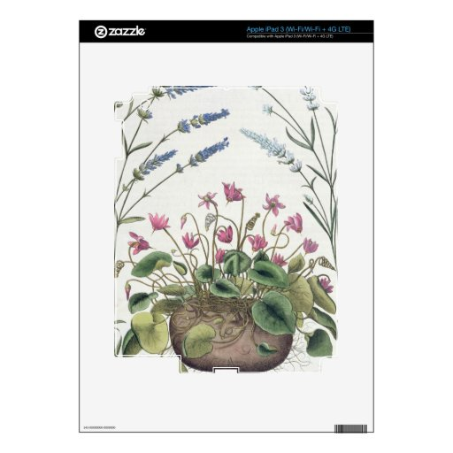 Cyclamen and Lavender: 1.Cyclamen Romanum; 2.Spica Decal For iPad 3