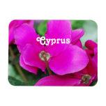 Cyclamen de Chipre Imán Rectangular