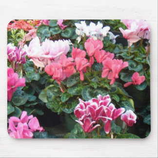 Cyclamen Party Mouse Pad