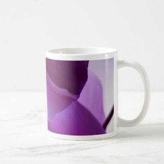 Cyclamen púrpura taza