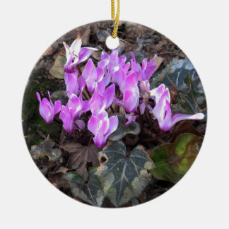 Cyclamens in Spring Ceramic Ornament