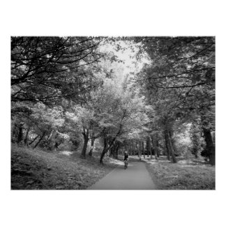 Cycle Way - Black and White Poster