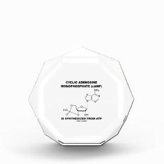 Cyclic Adenosine Monophosphate (cAMP) From ATP Acrylic Award