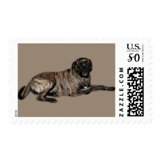 Cyclone Neopolitan Mastiff Postage