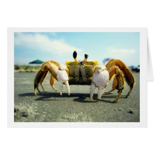 Cyclops Crabby Greeting Card