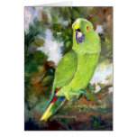 Cydney Yellow Naped Parrot Greeting Card
