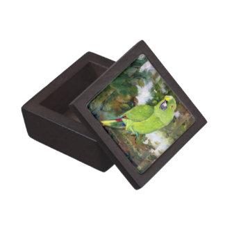 Cydney Yellow Naped Parrot Jewelry Box