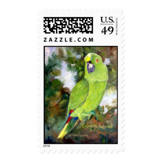 Cydney Yellow Naped Parrot Postage Stamp