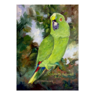 Cydney Yellow Naped Parrot Poster