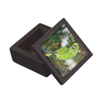 Cydney Yellow Naped Parrot Premium Trinket Boxes