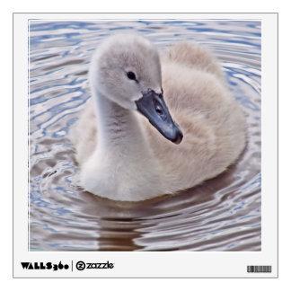 Cygnet Mute Swan Wall Sticker