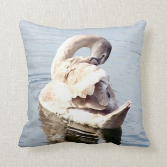 Cygnet Swan Preening Throw Pillow