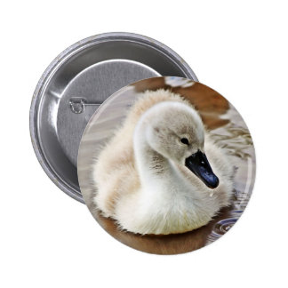 Cygnet Water Drop Buttons