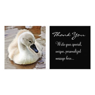 Cygnet Water Drop (Thank You) Card