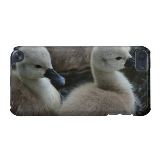 cygnets in grey iPod touch 5G cases