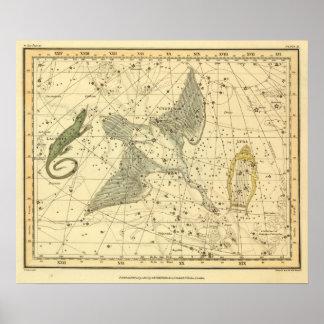 Cygnus, Laceria, and Via Lactea Poster