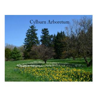 Cylburn Arboretum Postcard