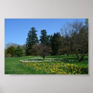 Cylburn Arboretum Poster