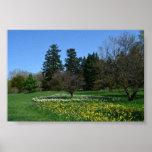 Cylburn Arboretum Print