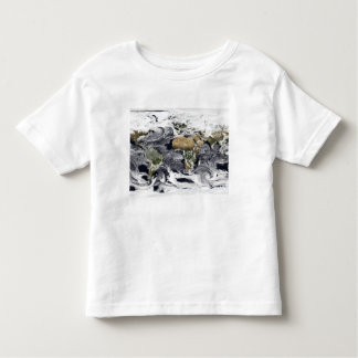Cylindrical equidistant projection toddler t-shirt