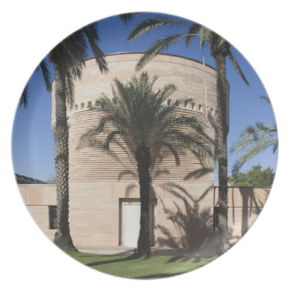 Cymbalista Synagogue Plate