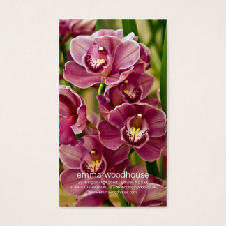 Cymbidium Orchid Business Card
