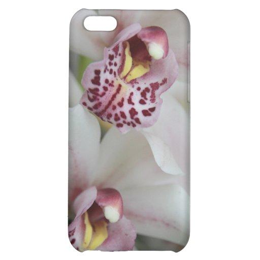Cymbidium Orchid iPhone 5C Case