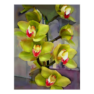 Cymbidiums chartreuses poster