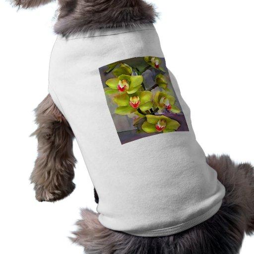 Cymbidiums chartreuses ropa de mascota